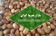 خرید و فروش خرما زاهدی خوزستان