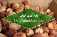 انواع خرما زاهدی در بازار داخلی و خارجی