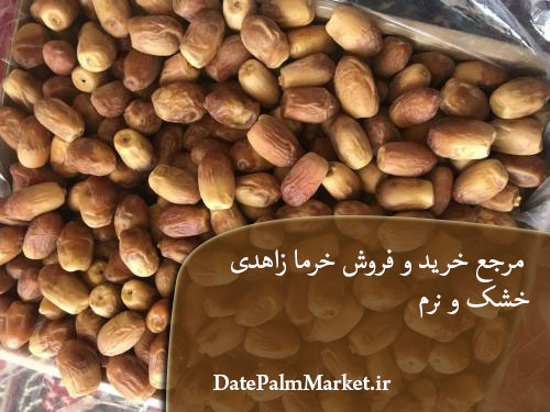 قیمت عمده خرمای زاهدی اهواز